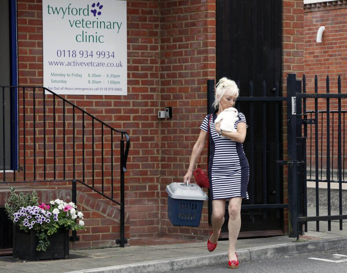 Debbie Mcgee Leaves A Veterinary Clinic In London 1