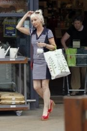 Debbie Mcgee Leaves A Veterinary Clinic In London 4