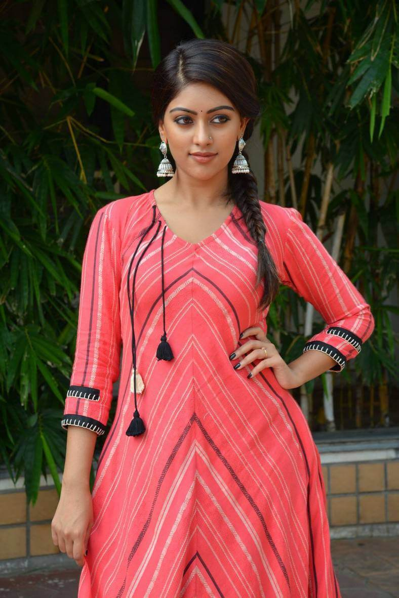 Anu Emmanuel at Majnu Movie Success Meet Photos