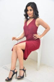 Aparnaa Bajpai Photoshoot in Maroon Dress Images