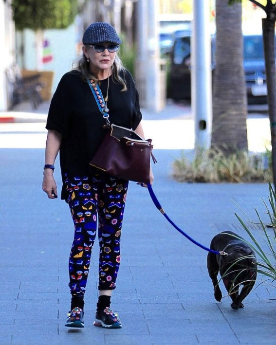 Carrie Fisher Stills Walks Her Dog Out in Los Angeles