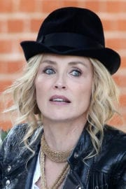 Sharon Stone Stills Set of 'A Little Something for Your Birthday' in West Hollywood