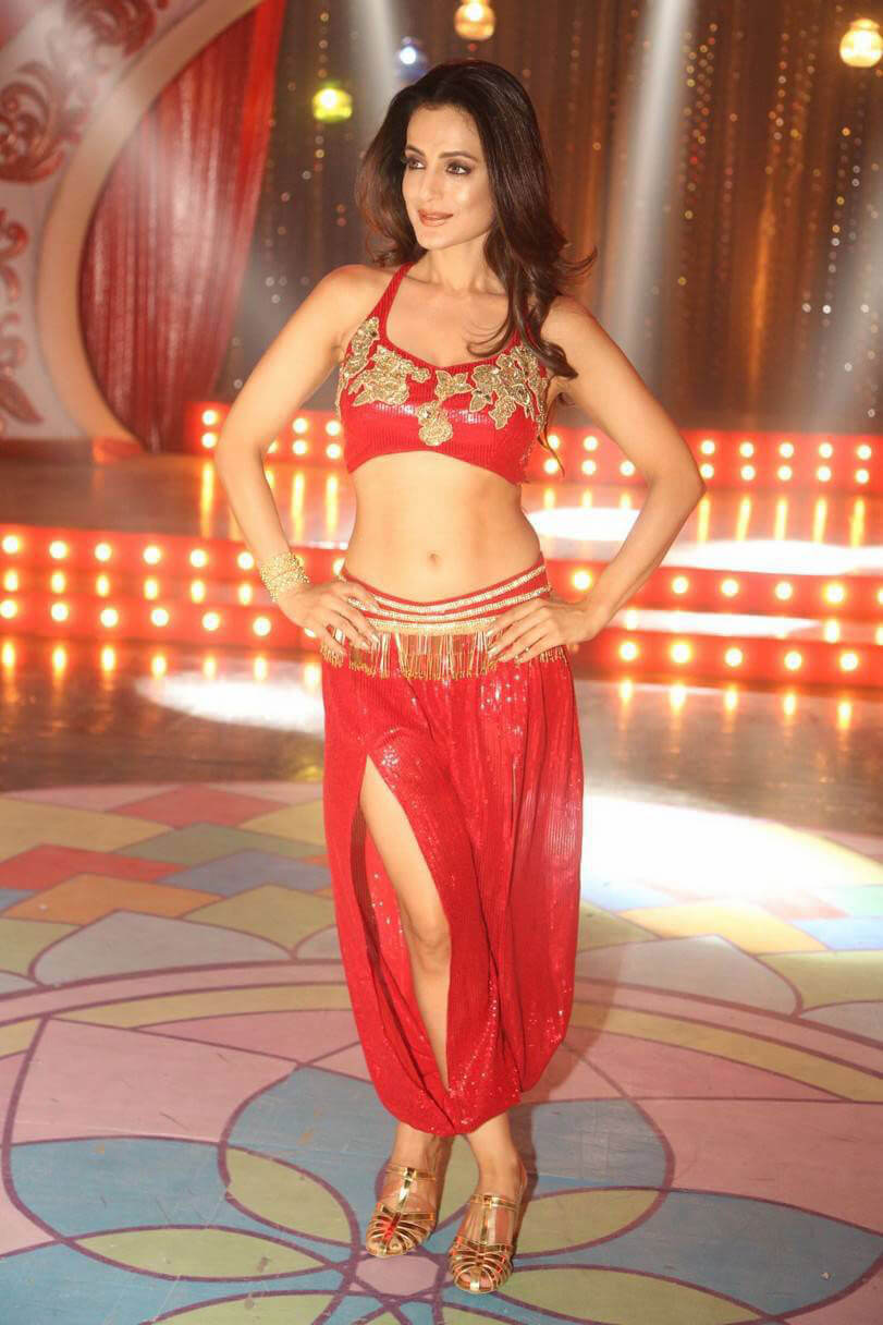 Ameesha Patel Photos From Aakatayi Movie