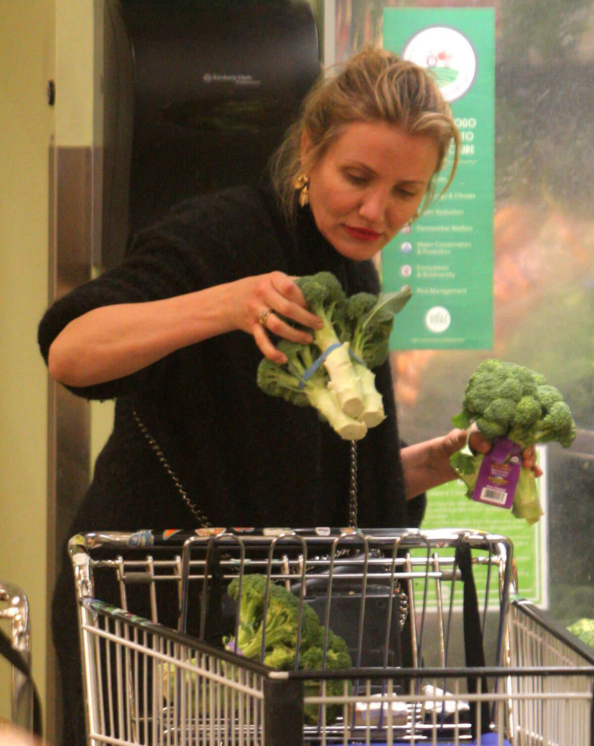 Cameron Diaz Stills Shopping at Whole Foods in Beverly Hills