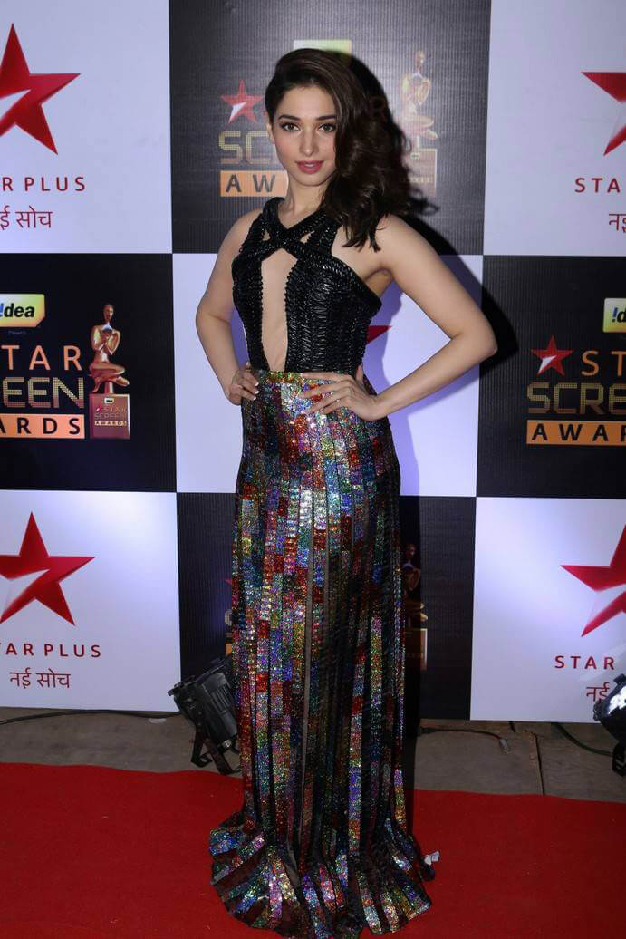 Celebrity at Star Screen Awards 2016