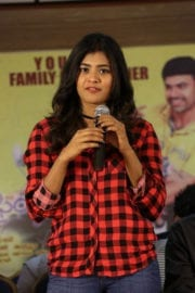 Hebah Patel Nanna Nenu Na Boyfriends Movie Success Meet Photos