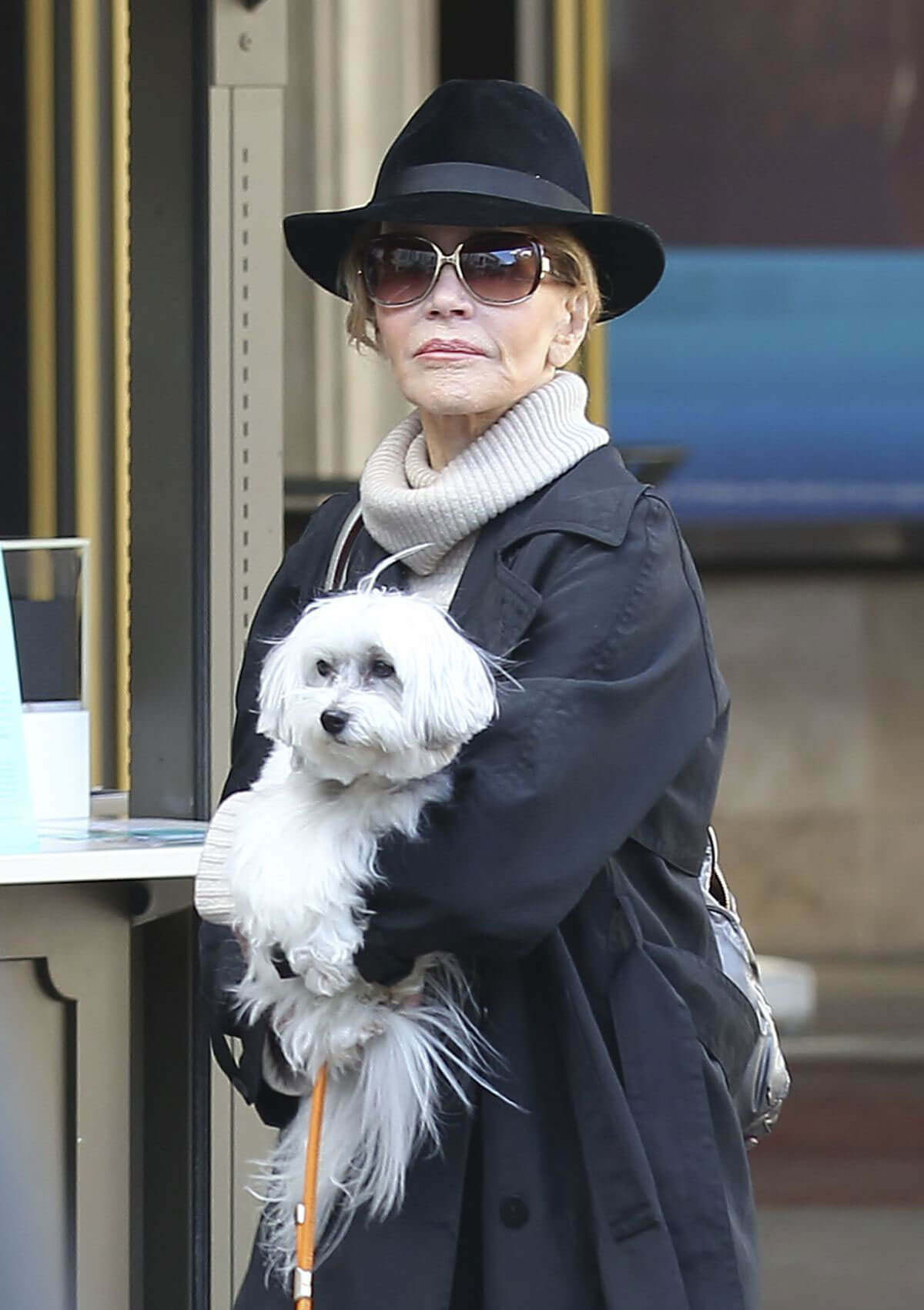 Jane Fonda Out Shopping in West Hollywood