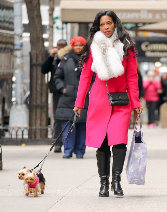 Kenya Moor Out Shopping with Her Dogs in New York