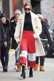 Gigi Hadid Out for Lunch in New York