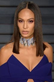 Joan Smalls Stills at 2017 Vanity Fair Oscar Party in Beverly Hills