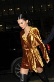 Kendall Jenner Stills at Her Love Magazine Party in London
