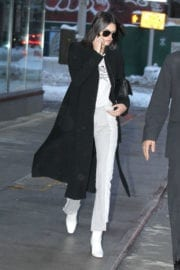 Kendall Jenner Stills Out in New York