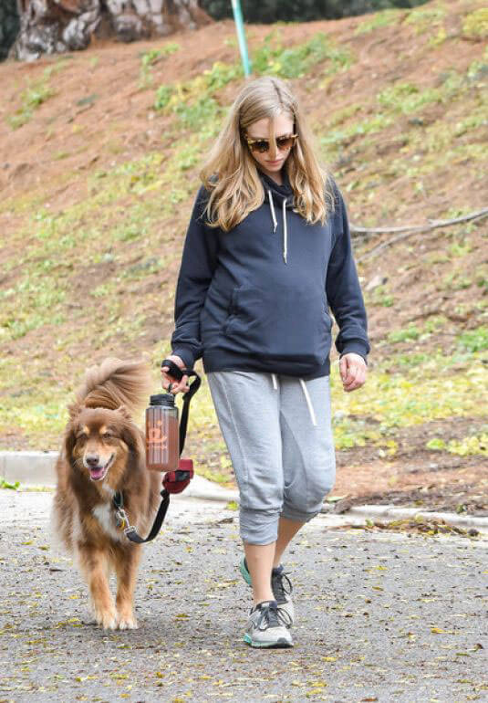 Pregnant Amanda Seyfried Stills Walks Her Dog Out in West Hollywood