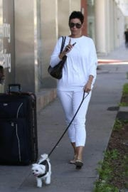 Nicole Mitchell Murphy Stills Walks Her Dog Out in West Hollywood 5