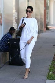 Nicole Mitchell Murphy Stills Walks Her Dog Out in West Hollywood 8