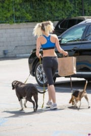 Miley Cyrus Stills Out with Her Dogs in Los Angeles