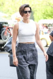 JAIMIE ALEXANDER Arrives at Her Hotel in New York