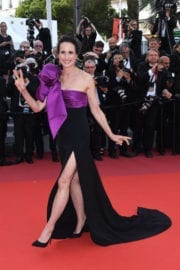 Andie MacDowell at The Meyerowitz Stories Premiere at 70th Annual Cannes Film Festival