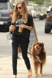 Amanda Seyfried Stills Out for Lunch at Cheebo in West Hollywood
