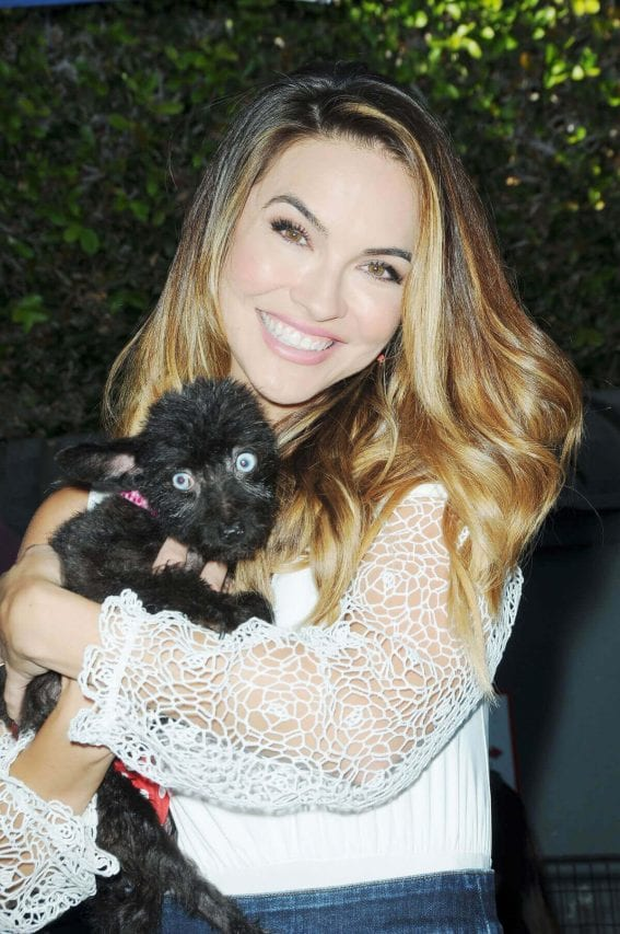Chrishell Stause Stills at Daytime for Dogs in Los Angeles