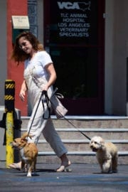 Minka Kelly Stills Leaves Local Vets with Her Dogs in West Hollywood