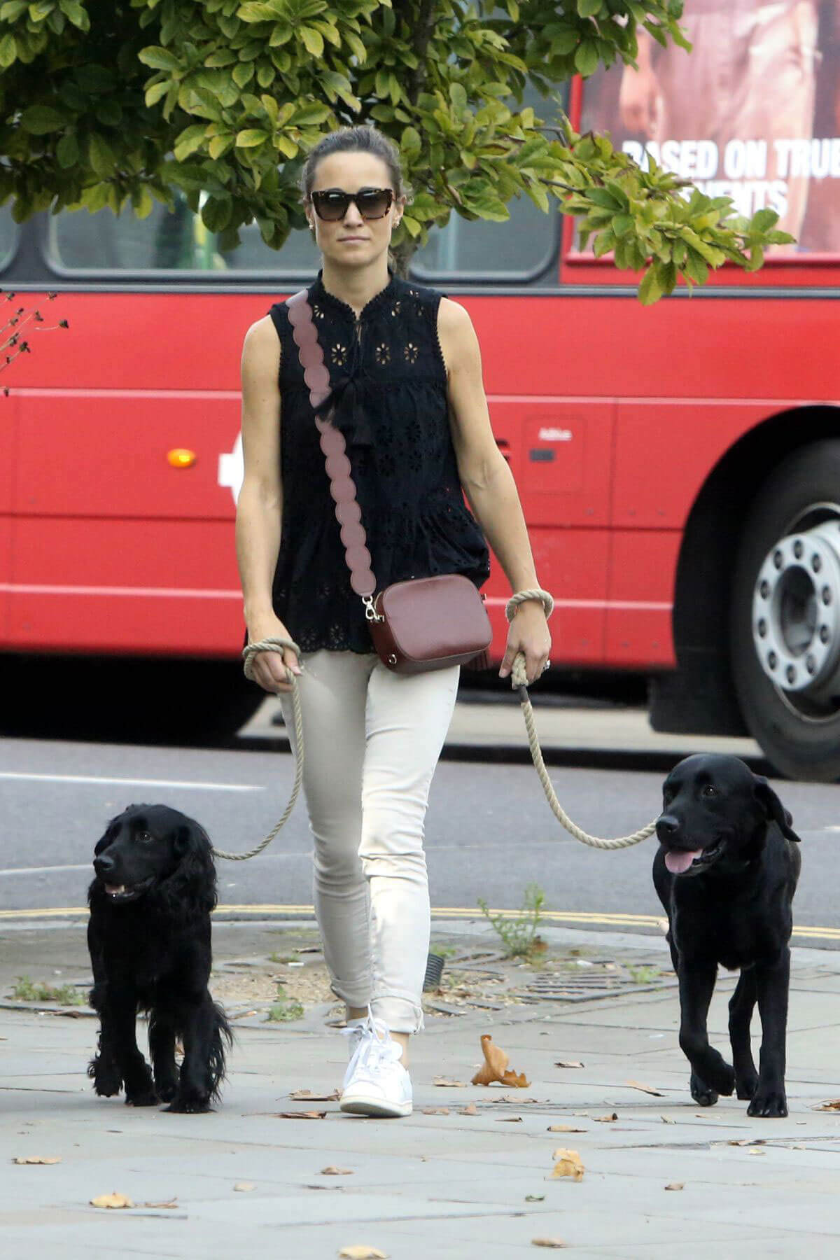 Pippa Middleton Stills Walks Her Dogs at Kings Road in London