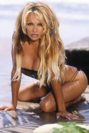 Pamela Anderson Poses for FHM Magazine, 2004 Phots