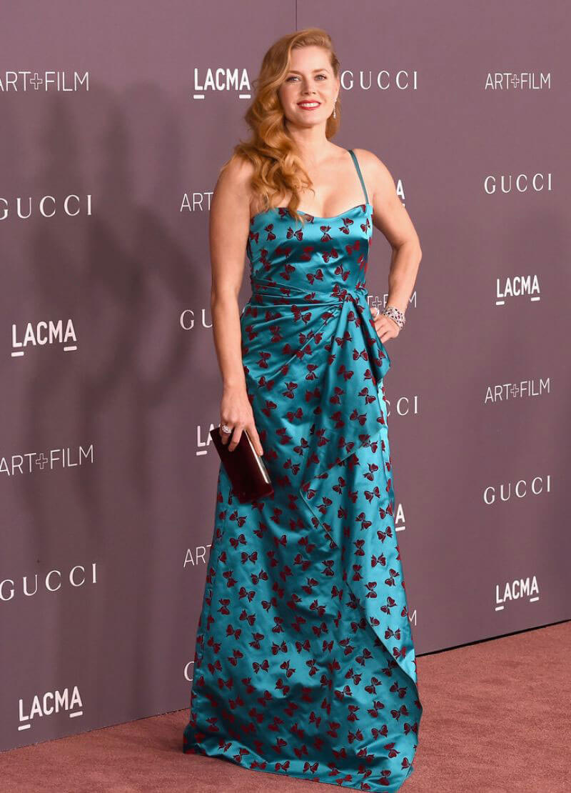 Amy Adams Stills at 2017 LACMA Art + Film Gala in Los Angeles 2017/11/04