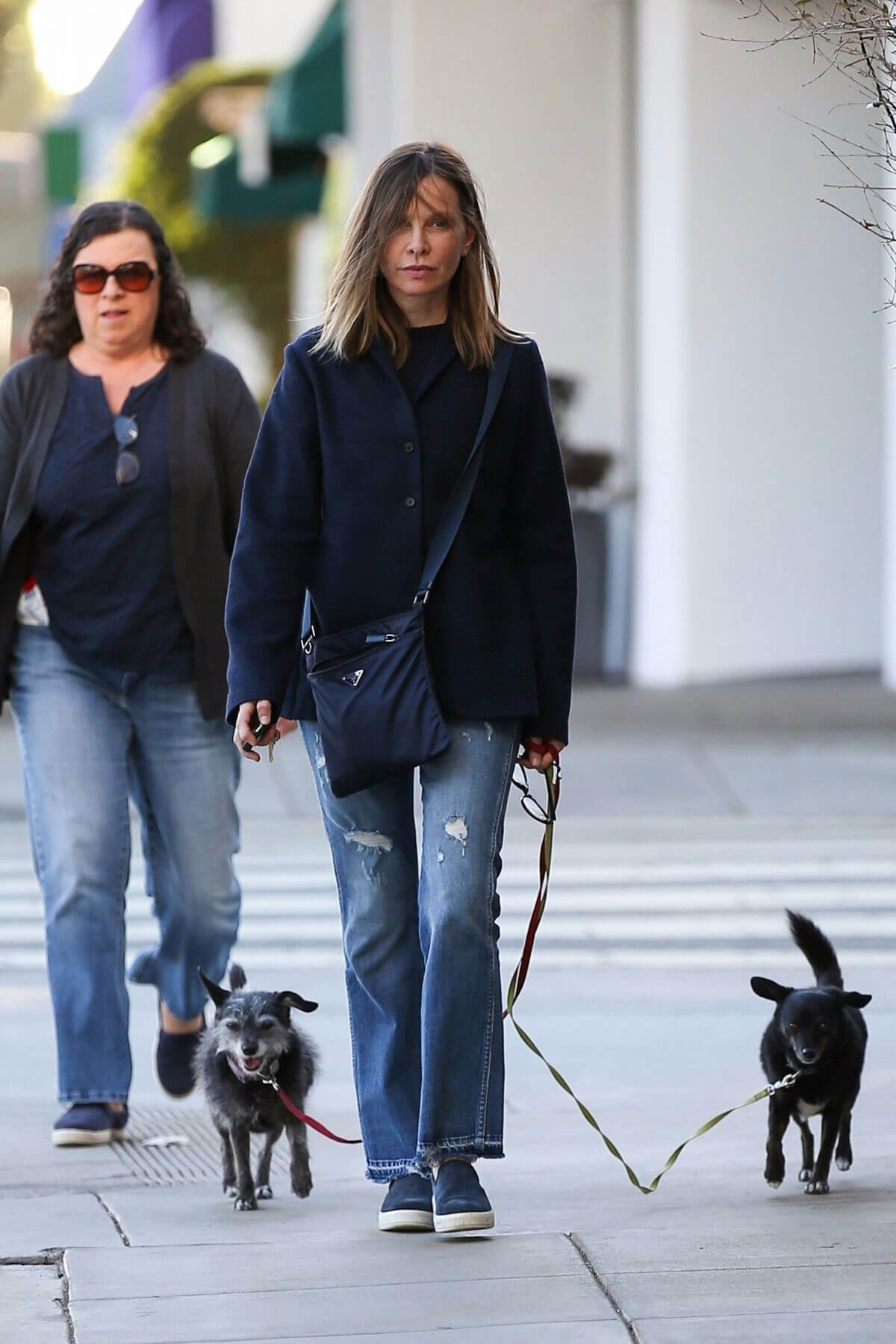 Calista Flockhart Stills Walks Her Dog Out in Brentwood