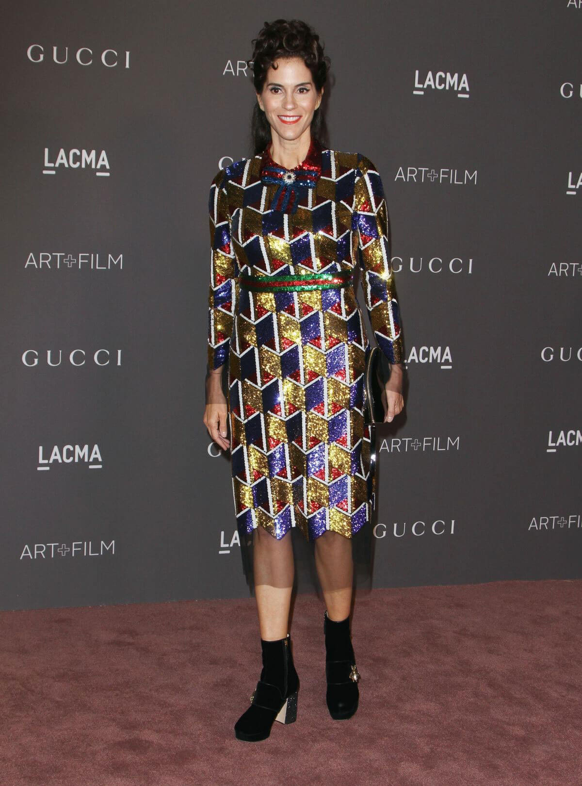 Jami Gertz Stills at 2017 LACMA Art + Film Gala in Los Angeles