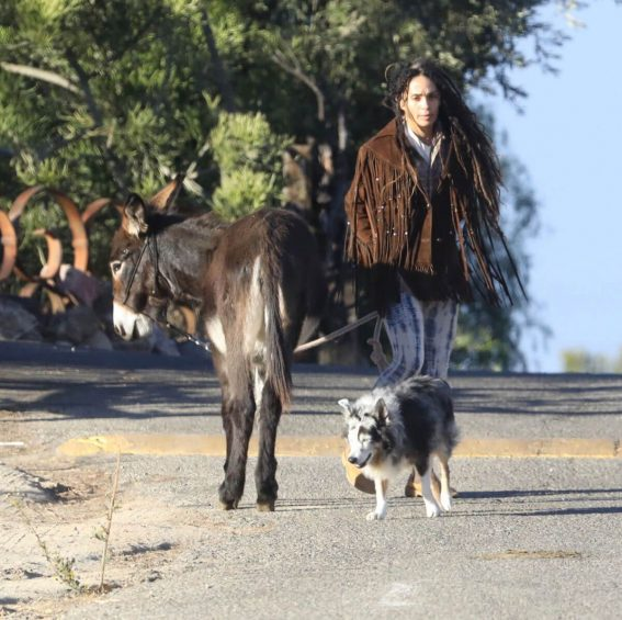 Lisa Bonet Stills Out with a Donkey and a Dog Images