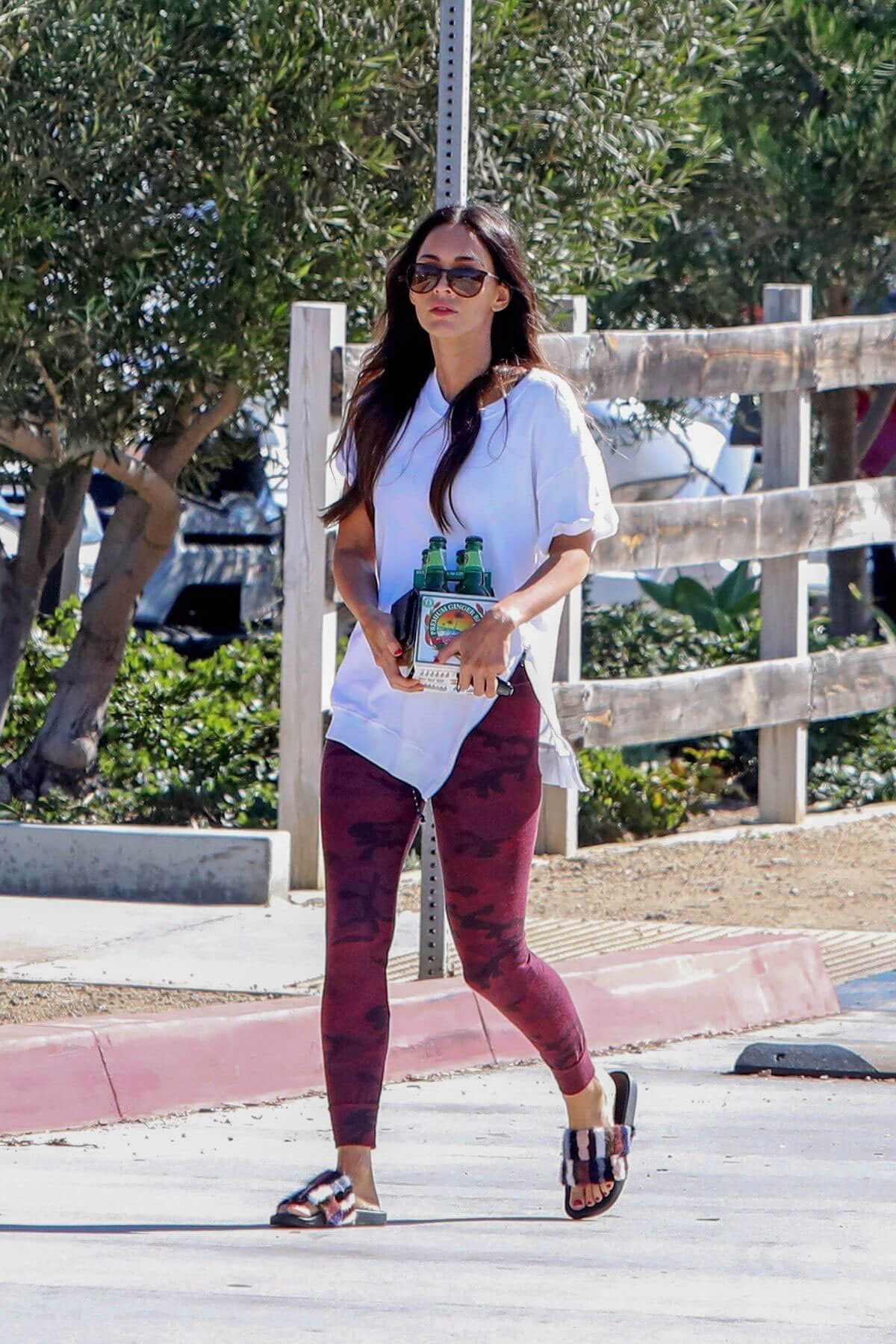 Megan Fox Picks Up Ginger Beer Out and About in Malibu