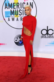 Sibley Scoles Stills at American Music Awards 2017 in Los Angeles