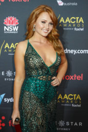 Brooke Nichole Lee Stills at 2017 AACTA Awards in Sydney 2017/12/06
