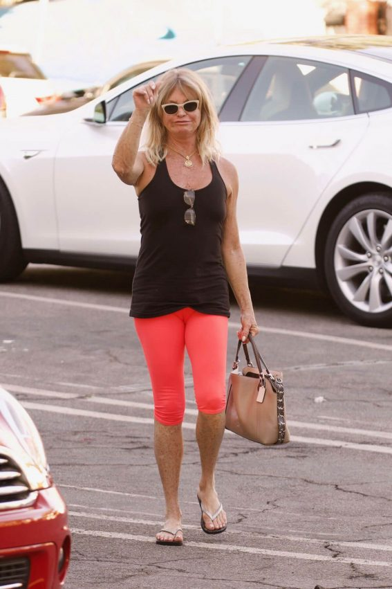 Goldie Hawn Stills Out Shopping in Brentwood 2017/11/22