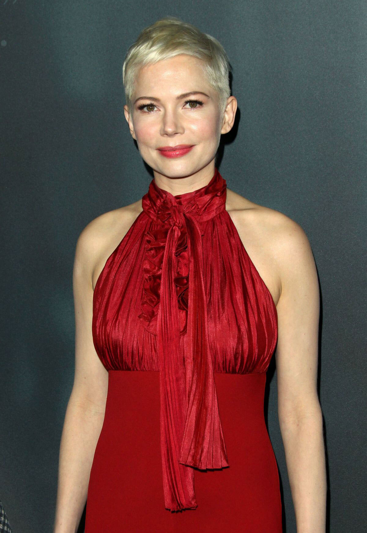 Michelle Williams Stills at All the Money in the World Premiere in Beverly Hills 2017/12/18
