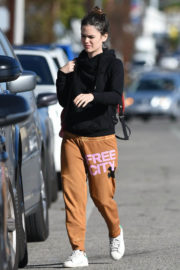 Rachel Bilson Stills Out for Lunch in Los Angeles 2017/12/21
