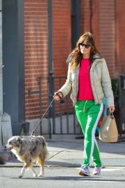 Helena Christensen Stills Walks Her Dog in New York 2018/01/28