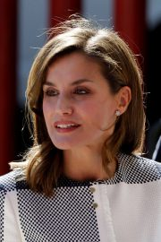 Queen Letizia of Spain Stills at Red Cross Building in Mexico City 2017/11/13