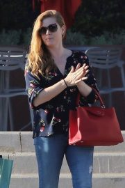Amy Adams Stills Out Shopping in West Hollywood 2018/02/02