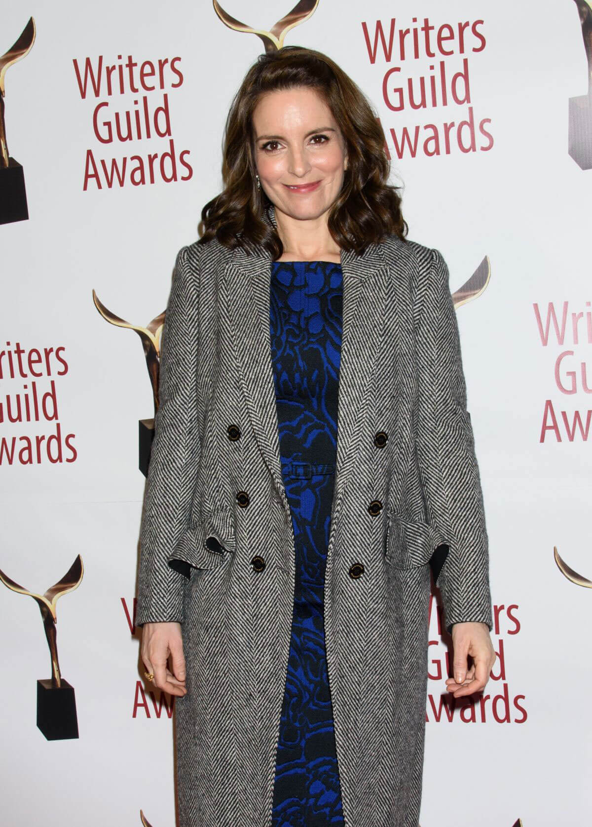 Tina Fey Stills at Writers Guild Awards 2018 in Beverly Hills 2018/02/11