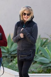 Goldie Hawn Stills Out Shopping in Brentwood 2018/02/24