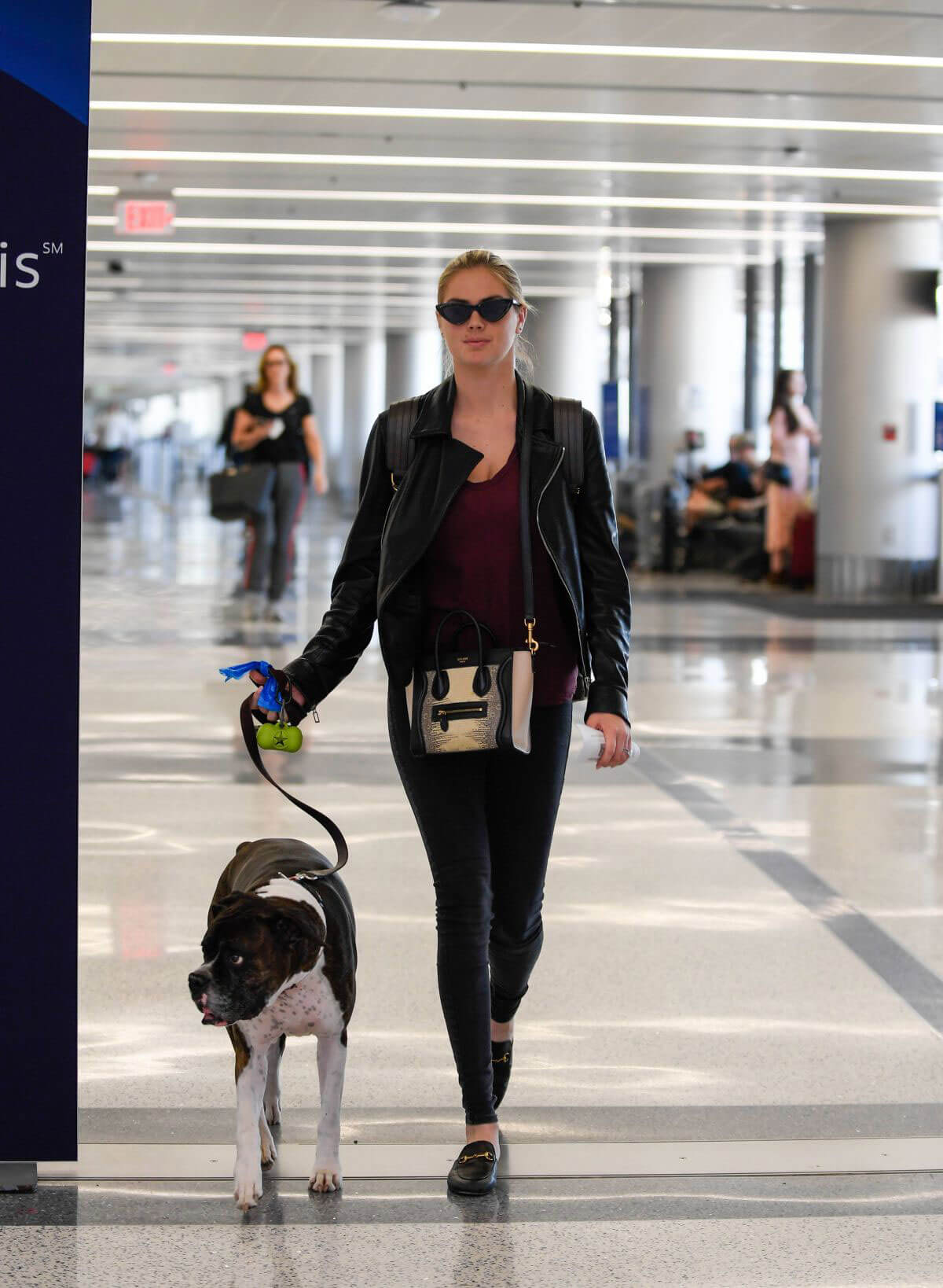 Kate Upton and Her Dog Stills at LAX Airport in Los Angeles 2018/04/22 7