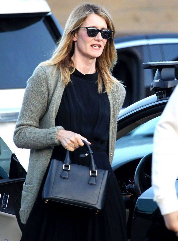 Laura Dern Stills Out and About in Los Angeles 2018/04/22 5