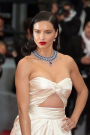 Adriana Lima Stills at Burning Premiere at 71st Annual Cannes Film Festival 2018/05/16 3