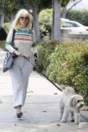 Alice Eve Out with Her Dog in Los Angeles 2018/05/29 1