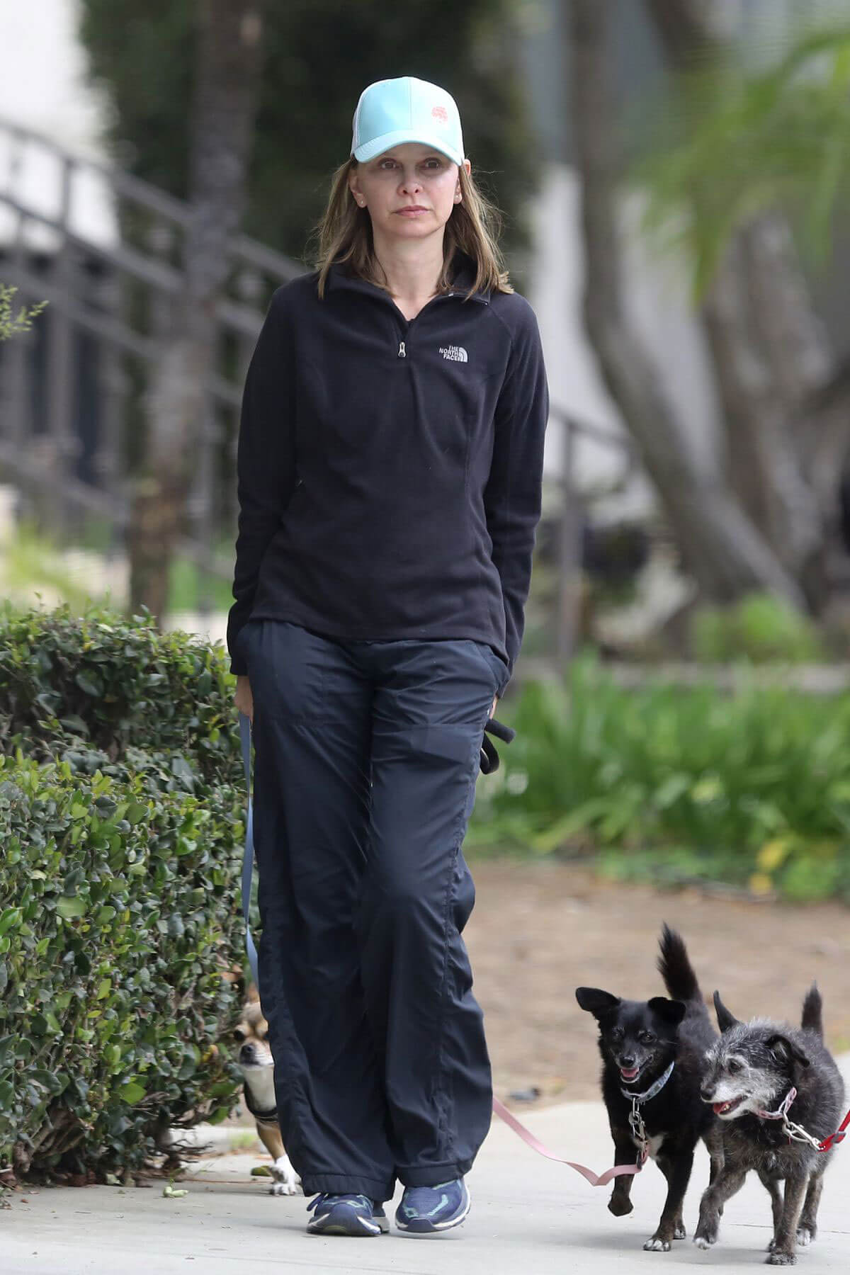 Calista Flockhart Stills Out with Her Dogs in Santa Monica 2018/04/30 4