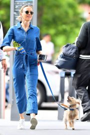 Naomi Watts Stills in Blue Jeans Jumper Out with Her Dog in New York 2018/05/22 4