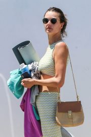 Alessandra Ambrosio Leaves Yoga Class in Los Angeles 2018/06/11 7