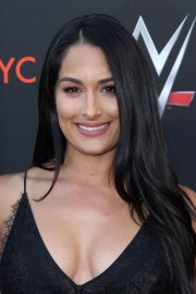Brie and Nikki Bella Stills at WWE FYC Event in Los Angeles 2018/06/06 5